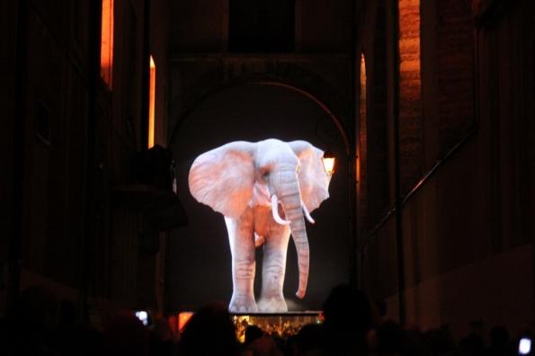 Lumières 2011 (3)