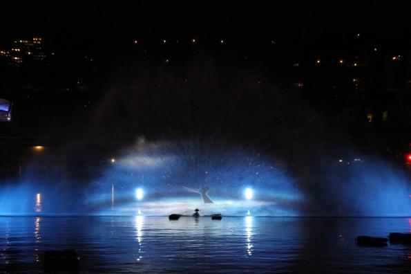 2012-12-08 Fête des Lumières (88) - crédit photo Anthony Nuguet